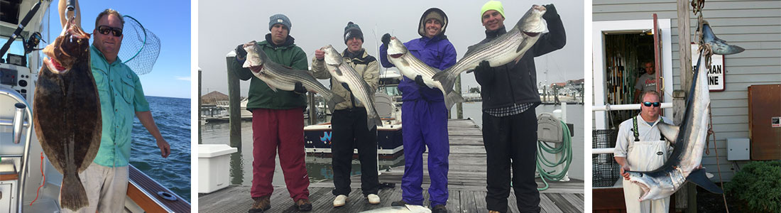 Fishing Trips Ocean City and Atlantic City NJ